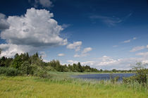 Sommer am See by lisa-glueck