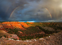 Double Rainbow von Leland Howard
