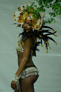 Electricat. Traditional South American Dancer. by patrizia-henderson-photography