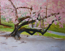 Cherry Tree by Linda Ginn