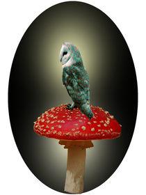 Owl Sitting Pretty. von Heather Goodwin