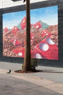 Pigeon and Dices. von morten larsen