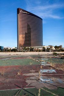 Wastland Las Vegas von morten larsen