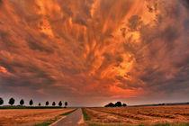 Wolken über den Kornfeldern bei LB von fabinator