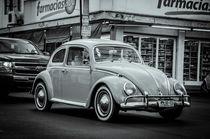Bug von tapinambur