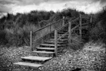 Steps To The Beach von David Pringle