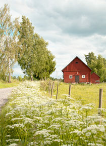 Swedish summer by Leopold Brix