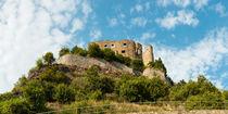 Ruine Ehrenfels (1) von Erhard Hess