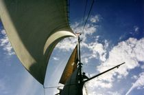 Jib sails by maritime-art