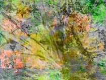 Sonnenstrahl by Helmut Englisch