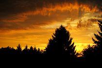 Sonnenaufgang by Elke Balzen