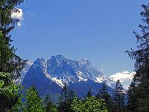 Zugspitze vor Frühlingsgrün von laptoplederhose