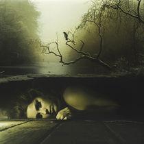 Forever Lost von Richard Davis
