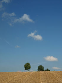 Wolkendiagonale von Brigitte Deus-Neumann