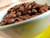 Kaffeebohnen in Schüssel von lucylaube