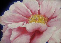 Pink Poppy by Aubrey Campbell