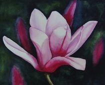 Magnolia by Aubrey Campbell