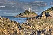 Swansea Mumbles Lighthouse by Dan Davidson