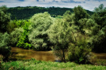 river in summer von Péter Fodor