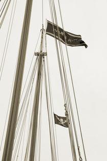 Ship's Flag - Key West von shotwellphoto
