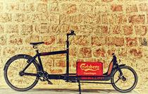 Old Bicycle by Dejan Knezevic