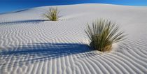White Dunes by usaexplorer