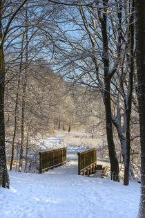 Bridge in snowy Forest by kunertus