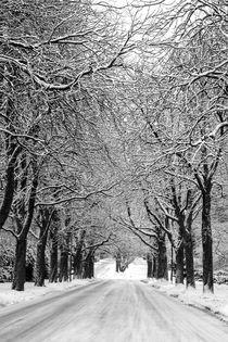 Snowy Road von kunertus