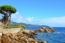 Coastline in le lavandou  var cote d'azur provence, France von 7horses