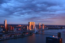 The Rotterdam in the Sun by Marcel van Duinen