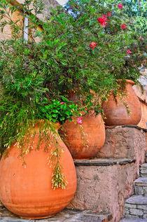 Terracotta pots colors of the provence von 7horses
