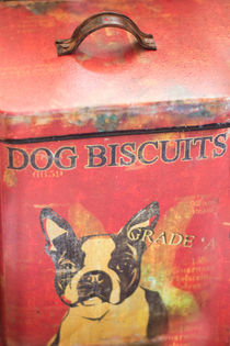 Dog Biscuits by agrofilms