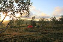 Lappland 42 von Karina Baumgart