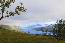 Lappland 41 by Karina Baumgart