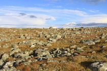 Lappland 34 by Karina Baumgart