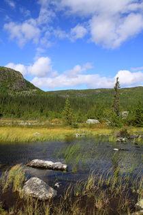 Lappland 25 by Karina Baumgart