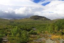 Lappland 22 von Karina Baumgart