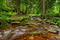 Mountain Stream III by ullrichg