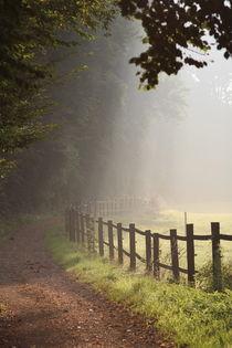 Spazierweg in Hebborn by © Ivonne Wentzler