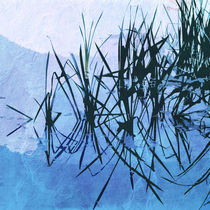 Reed Abstract by David Pringle