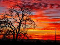 Sundown on Jeffcoat by Kathleen Bishop