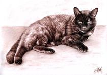 The Cat von Nicole Zeug