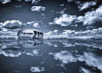 Noah's Ark von Stefan Kierek