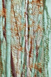 'Waldträume' by Maria Ismanah  Schulze-Vorberg