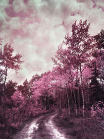 Sometimes my world turns pink von Priska  Wettstein