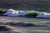 The Green Wave von Roger Butler