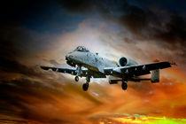 A-10 Thunderbolt II von James Biggadike