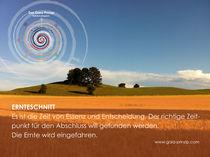 Gaia Prinzip: Ernteschnitt von Veronika Lamprecht