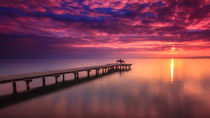 Sunset Lake Neusiedl by Zoltan Duray
