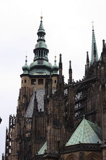 catedral by mmella